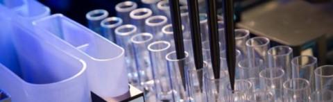 Un test genético detecta el virus del Zika antes de que aparezcan anticuerpos