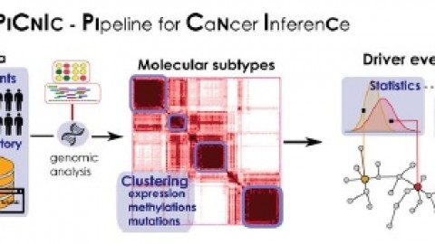 Un nuevo método computacional ayudará a conocer la progresión del cáncer colorrectal
