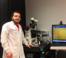 Sistema para analizar patógenos a partir de una muestra de ADN y acelerar la obtención de resultados